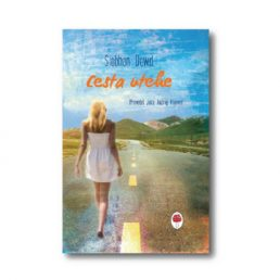 Cesta utehe, naslovnica