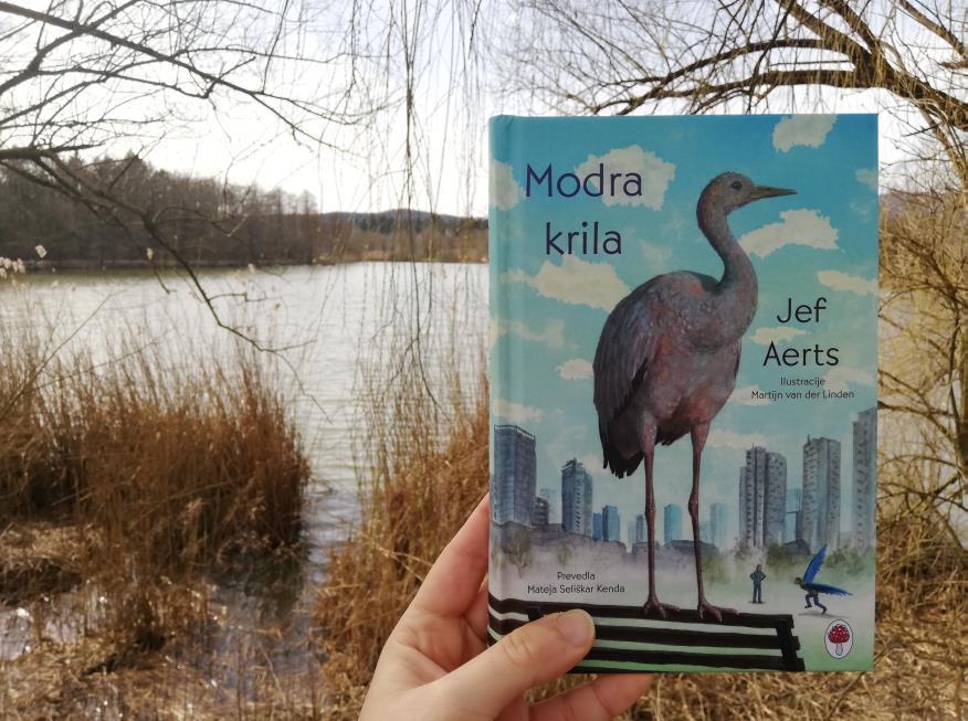 Modra krila, Moj malček, Novo na knjižnih policah, mag. Maja črepinšek